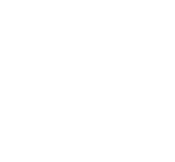 icon of network money sign