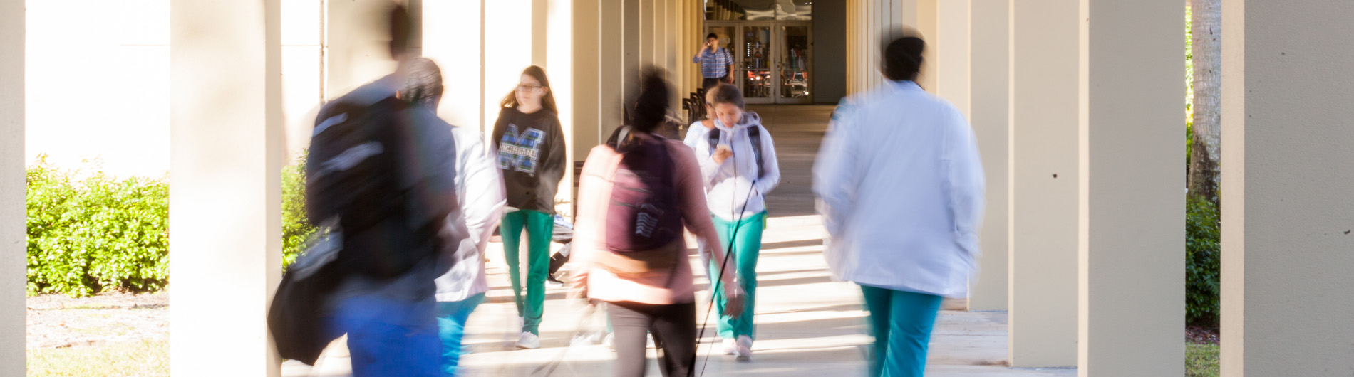 5 or 6 students walking down a column-lined hallway
